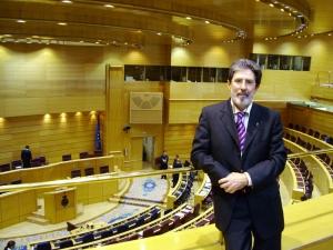 Senado (18-04-07. Estatuto). 1